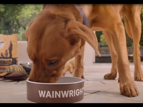 Pets At Home, and Wainwright's Commercial (2015) (Television Commercial)