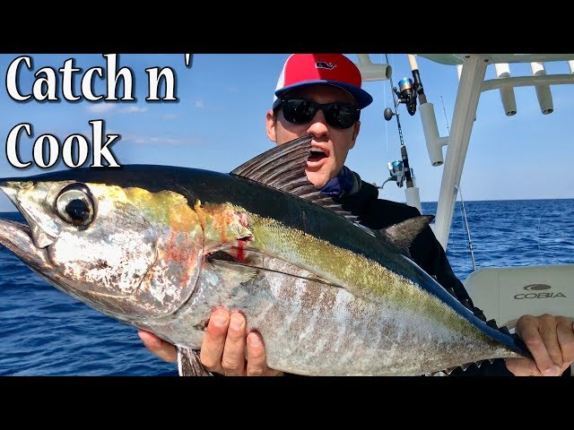 Catch and Cook Blackfin Tuna (Raw)