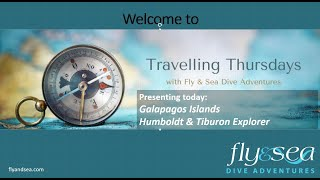 Traveling Thursdays   Galapagos   January 14, 2021
