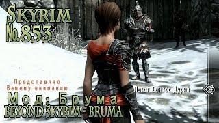 Skyrim s 853  Beyond Skyrim Bruma  Брума (начало: Два пути)