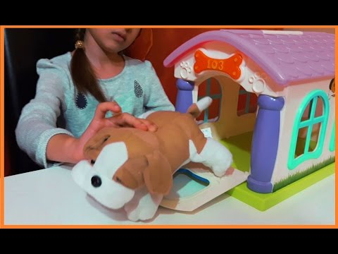 Funny toys for kids. Video with my pet house, little dog and accesories.