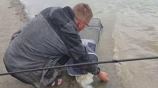 Платная рыбалка в казенной заимке барнаула