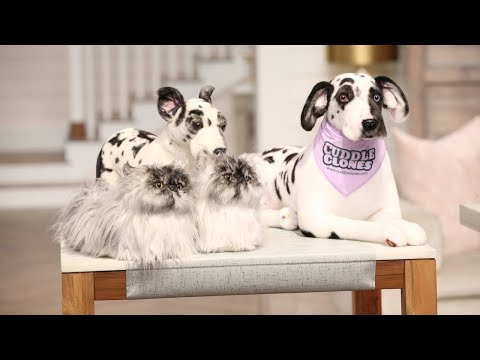 Turn Your Beloved Pet into a Cuddle Clone! - Pickler and Ben