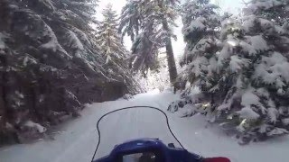 Sherpa Snowmobile Transporting Persons Uphill Most Popular Videos - Alpina sherpa