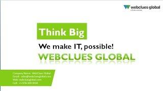 WebClues Global - Video - 1