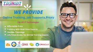 Best Online learning courses and training platform for IT professionals