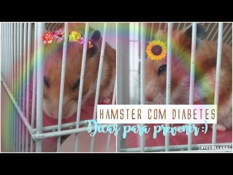 Ausrüstung Insulinabgabe und mögliche Komplikationen