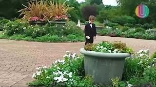 Ржака на свадьбе дети