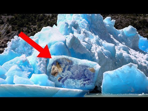 Most MYSTERIOUS Things Found Frozen In Ice!