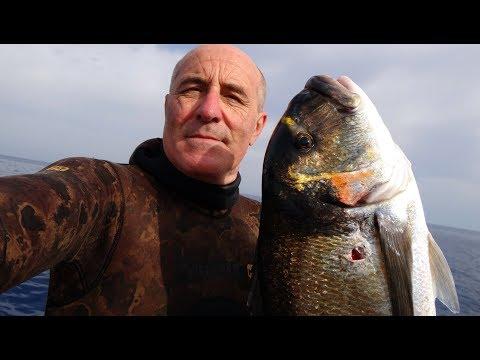 Per comprare trasmettono il finlandese su rete nazionale per pescare in deposito in linea