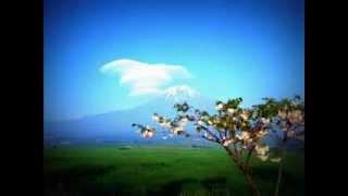 """""""Les Quatre Saisons Concerto n°1 en mi majeur, La Primavera. Allegro"""" - Vivaldi"""