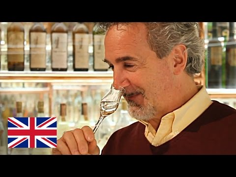 Differences between Grappa and grape brandy - Jacopo Poli
