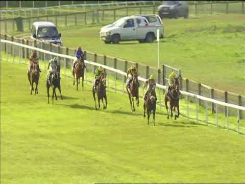 Foxtrot Knight May 2018 Pontefract Win