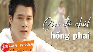 Hợp âm Còn Đó Chút Hồng Phai Vũ Quốc Việt