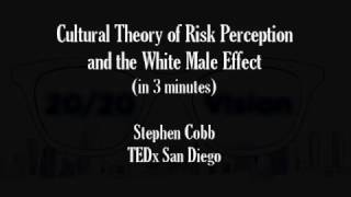 White Male Effect and Cultural Theory of Risk Perception (in 3 minutes)