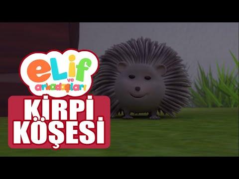 Elif ve Arkadaşları - Bölüm 22 - Kirpi Köşesi - TRT Çocuk Çizgi film