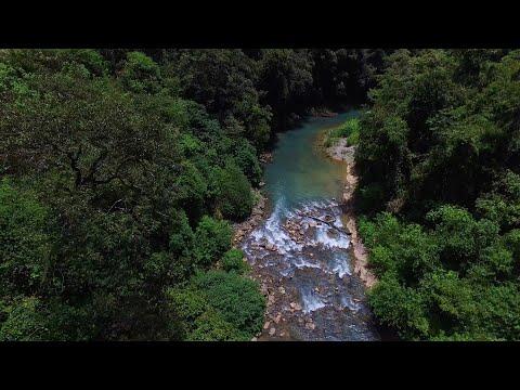 Renace y su estrategia ambiental poderosa