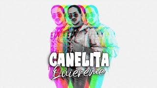 CANELITA - QUIEREME (LYRIC VIDEO)
