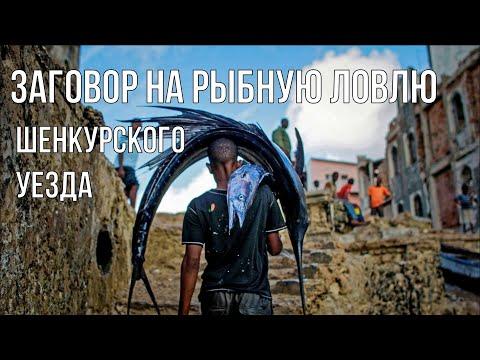 Заговор на рыбную ловлю Шенкурского уезда.  (Текст) 2019