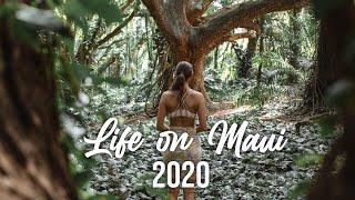 Life On Maui 2020 | Introduction