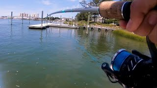 Epic Dock Fishing for Redfish and Flounder for Redfish Street Tacos