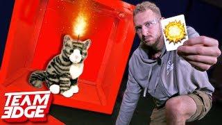 💥 Kittens Board Game!!