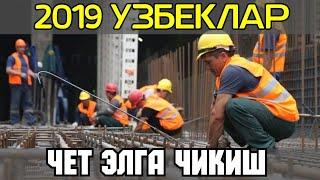 2019 ЙИЛДАН УТА ЖИДДИЙ ХАБАР ЧЕТ ЭЛГА ЧИКИШ