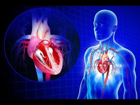 Ipertensione pressione sanguigna