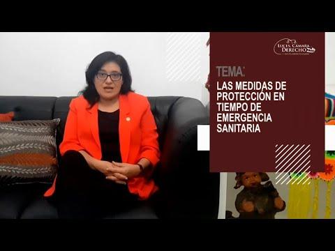 LAS MEDIDAS DE PROTECCIÓN EN TIEMPO DE EMERGENCIA SANITARIA - Luces Cámara Derecho 172
