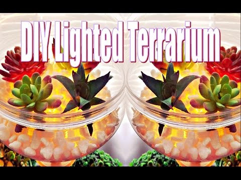 DIY Dollar Tree Light Up Terrarium using Adoriclife Copper Wire Lights. (99% Dollar Tree)