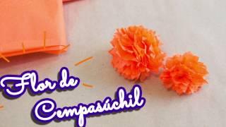 Flor De Cempasuchil De Papel China Free Video Search Site Findclip