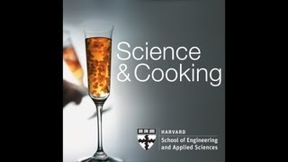 Food and Science | Lecture 2 (2012)