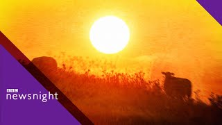 UK heatwave: Is climate change to blame? - BBC Newsnight