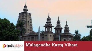 Mulagandha Kutty Vihara, Sarnath