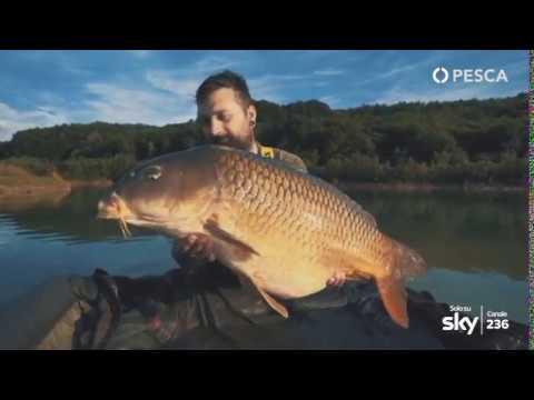 Video luglio 2015 da pesca