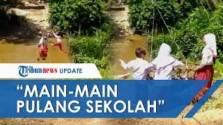 Klarifikasi Viral Video 3 Bocah Seberangi Sungai Naik Keranjang di Riau: Main-main Pulang Sekolah