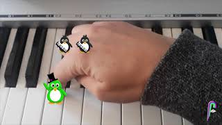 Finding C🐧💚