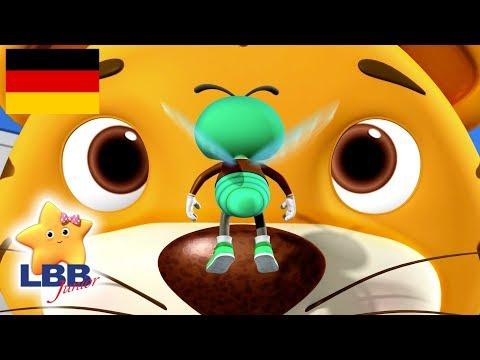 Kinderlieder | Das Lied von der Fliege | Little Baby Bum Junior Deutsch