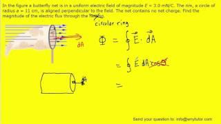 In the figure a butterfly net is in a uniform electric field of magnitude