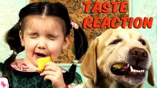 Реакция Доминики на разные фрукты | ребенок с собакой тестирует вкусовые ощущения