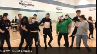 preview picture of video 'Walsall SU do The #PenguinDanceBattle for WWF'