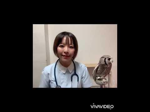 新宿 医療プレイ アダルトクリニック
