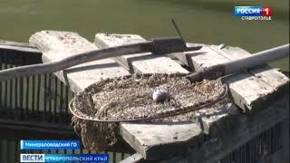 Рыбалка в ставропольском крае форум земляков