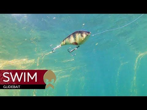 Swim Glidebait