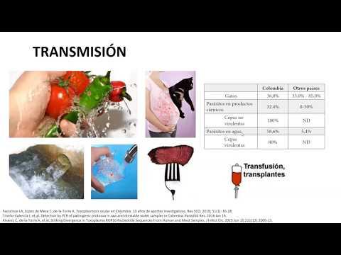 Papilloma virus vaccino uomo controindicazioni
