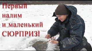 Первый НАЛИМ и маленький сюрприз! Речные снасти в деле - Болен Рыбалкой №596