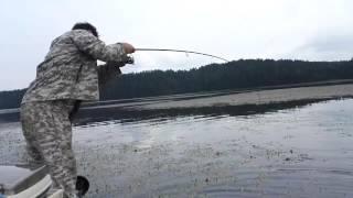 Ловля щуки на курминском заливе иркутского водохранилища