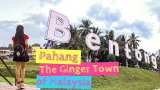 Bentong Pahang: Trip to The Ginger Town in Malaysia [Small Girl Big World]