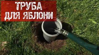 Как поливать и удобрять плодовые деревья видео