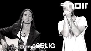 Selig - Ohne Dich (Live)